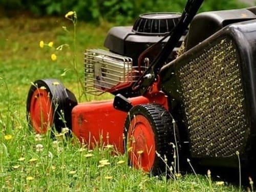 técnico de mantenimiento en jardines pasando la cortacésped