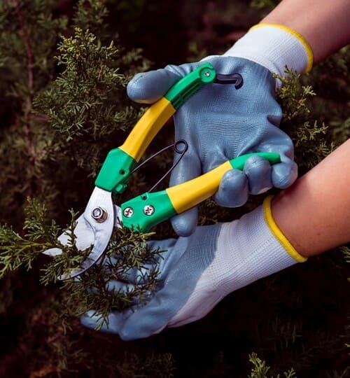 operario realizando mantenimiento del jardín